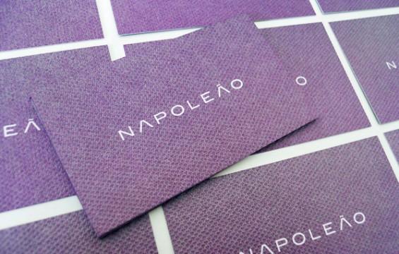 Napoleao 10